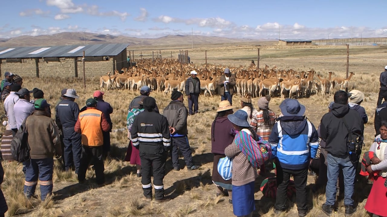 Trailer - Las cuidadoras del oro de los Andes