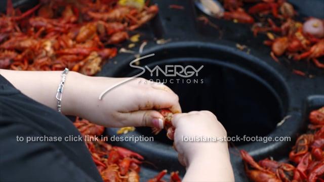 254B peeling cajun spicey boiled crawfish