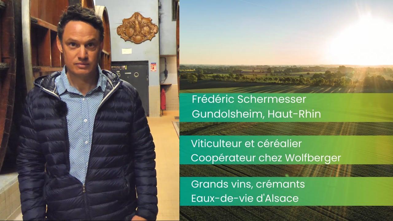 Frédéric Schermesser, viticulteur :