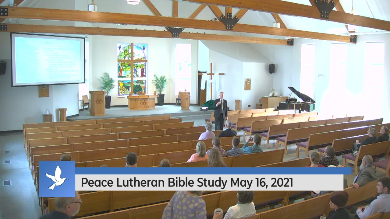 Peace Vimeo Stream