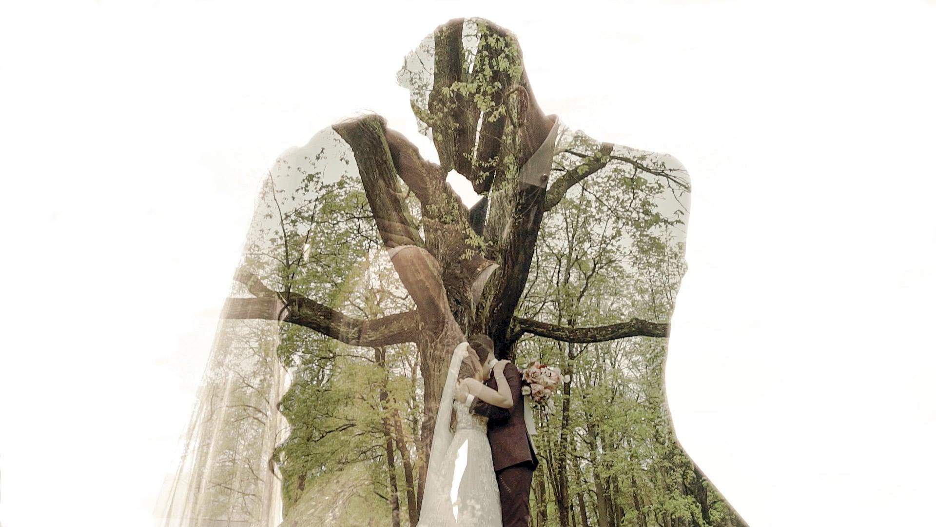 Sonja & Emre 2021 Wedding Teaser