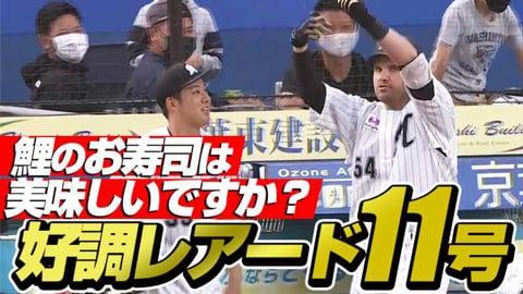 【幕張寿司開店】レアード 鯉のお寿司は美味しいですか?【11号2ラン】