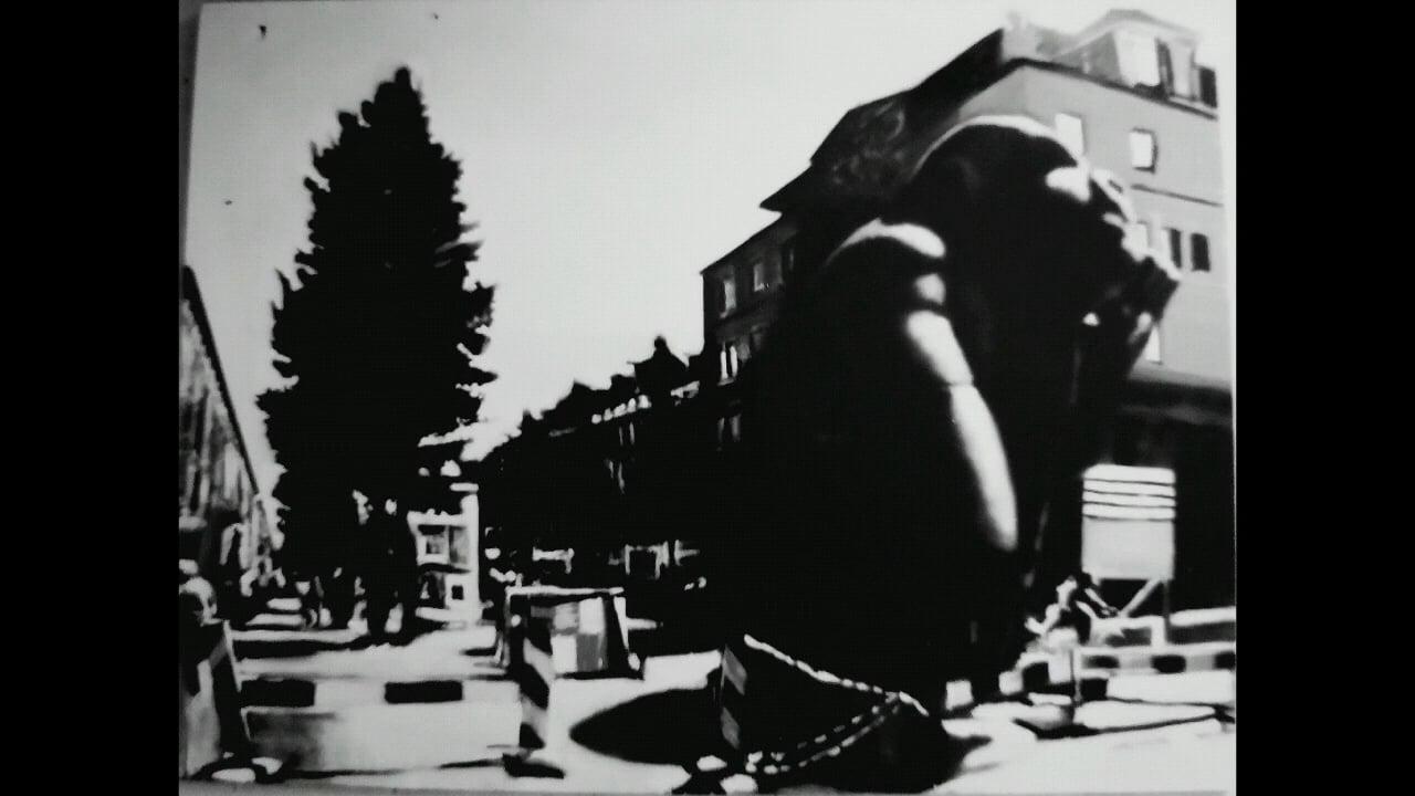 Monkey corner Linnaeusstraat 1e v.Swindenstraat