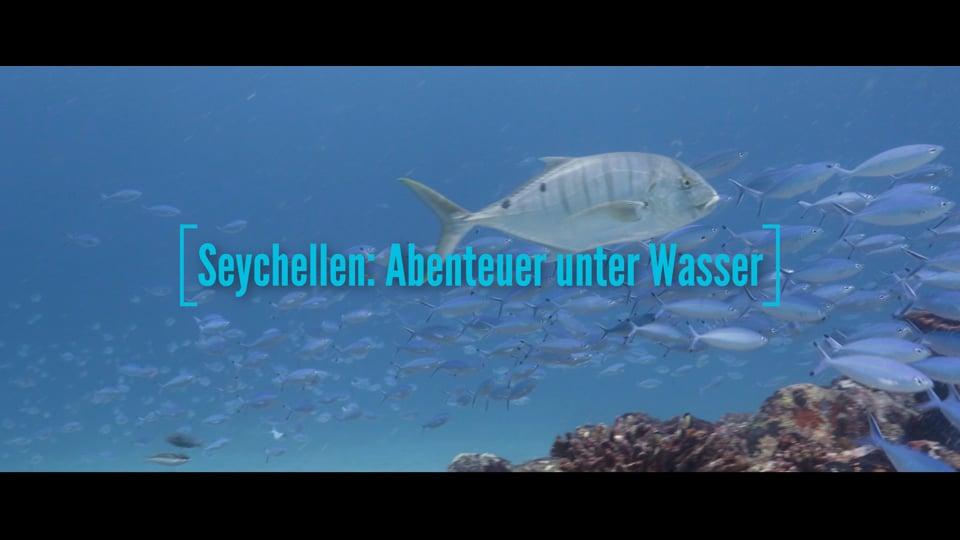 Seychellen: Abenteuer unter Wasser