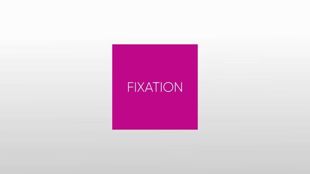 564531367 CURV Flash 150I - Fixation
