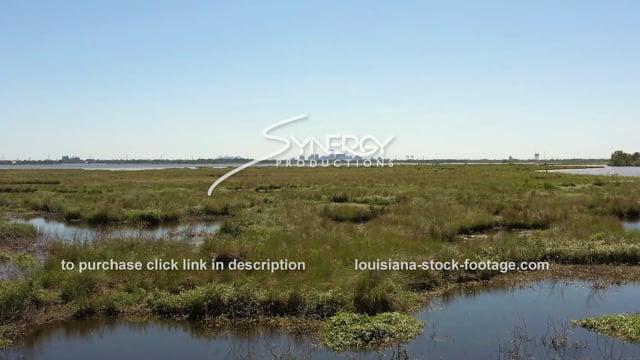 2852 eroding marsh New Orleans skyline in distance