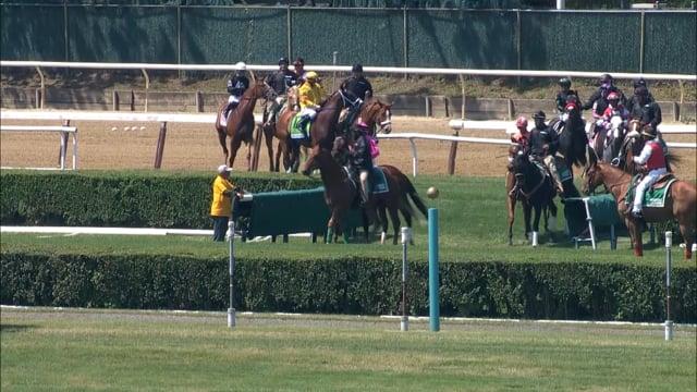 Casa Creed   Jaipur Stakes-G1 2021
