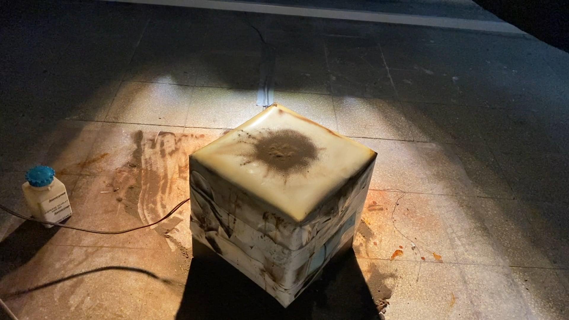 """Cymatics"" - Particle Exhibition"