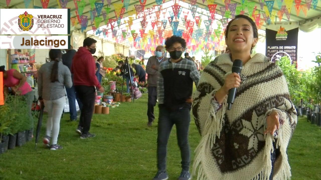 Primer Aniversario de Orgullo Veracruzano
