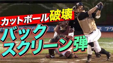 渡邉諒 『今日はカットボール破壊』のバックスクリーン弾