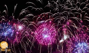 If you've got pets at home, here are some tricks to help them with fireworks!