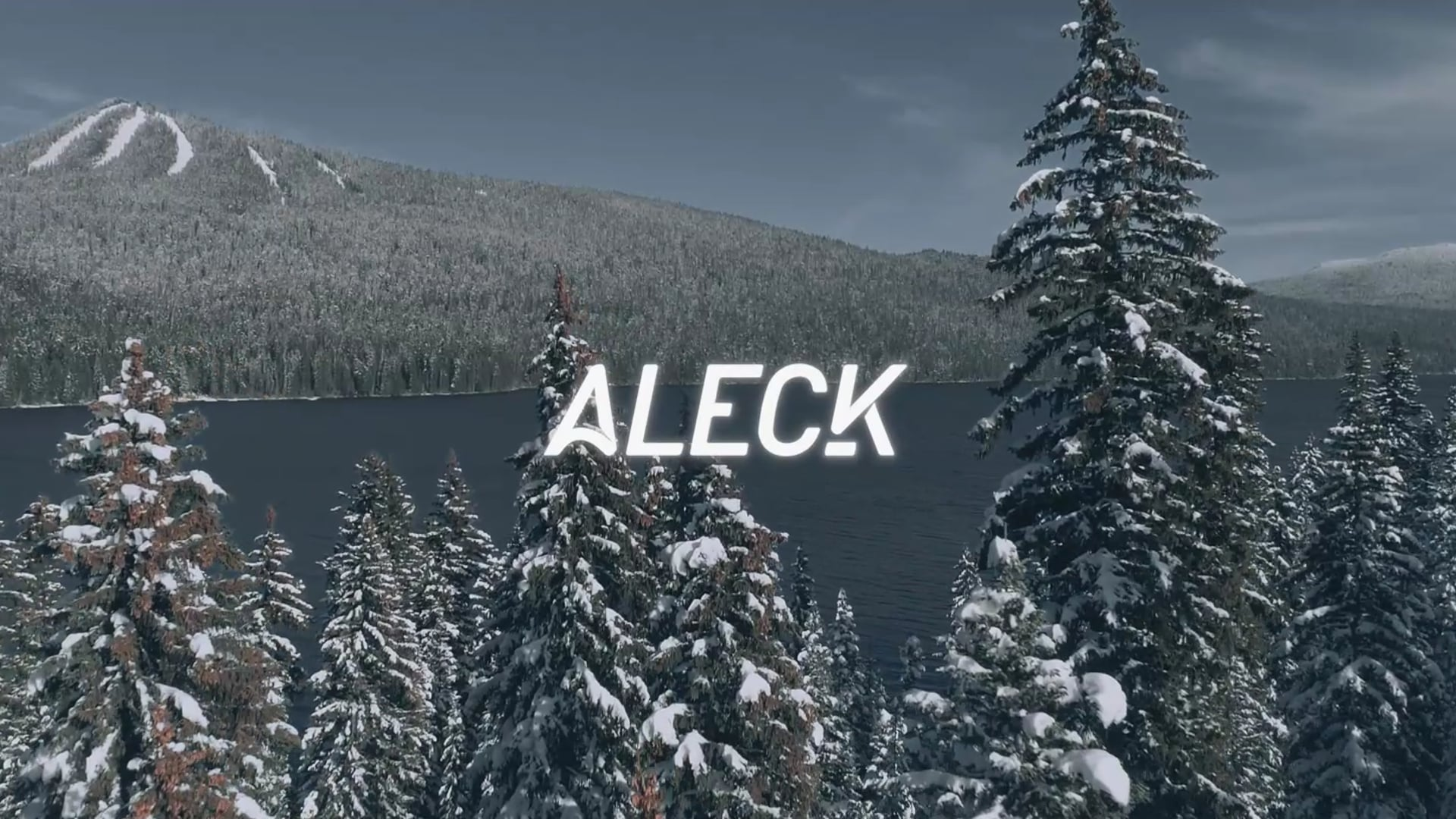 Aleck.io