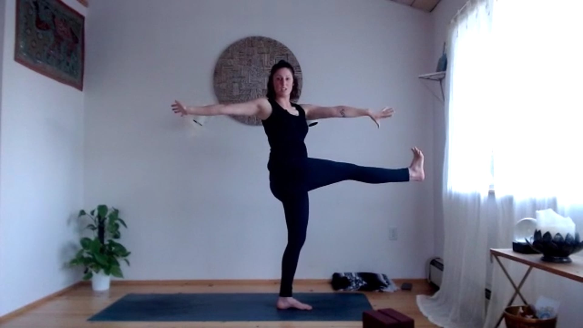 "75 min ""Raga and Dvesa"" Flow (Twisting Postures)"