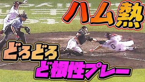 【勝利への執念】ファイターズ・近藤・石川亮『どろんこ・ど根性プレー』