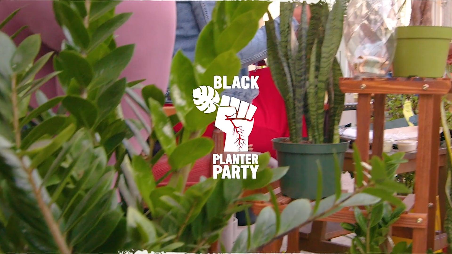 Tiny Plant Desk (06.11.21)