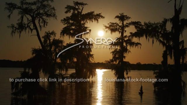 2935 beautiful sunset in Louisiana swamp