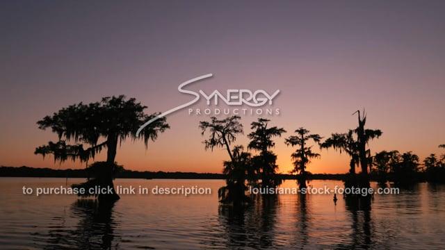 2947 Awesome Louisiana swamp sunset