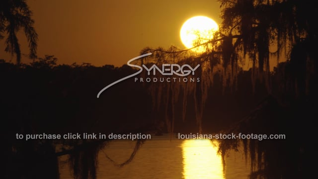 2951 sunset in swamp Louisiana saturday night