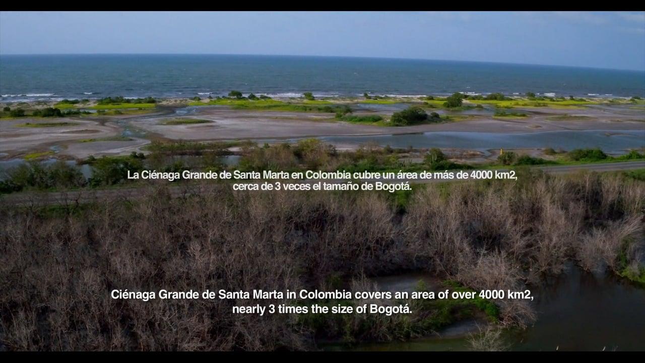 Salobre, a video by Andres Filipe Orjuela Bustillo