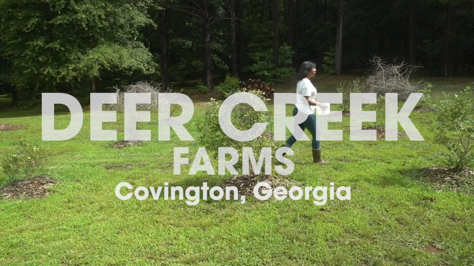 Deer Creek Farms
