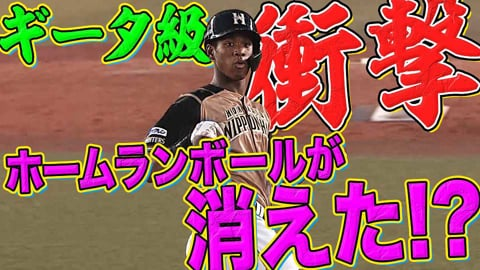 【ギータ級の衝撃】ファイターズ・万波『ホームランボールが消えた!?』