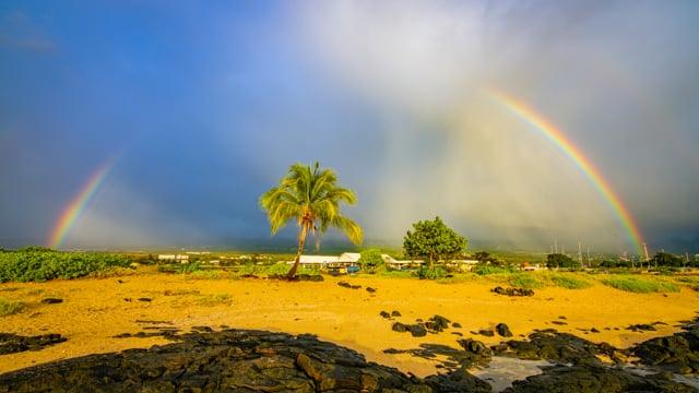 Incredible Diversity of the Big Island, Hawaii