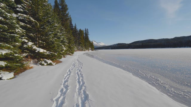 Walking near Jasper Nationla Park, Canada. Part 1