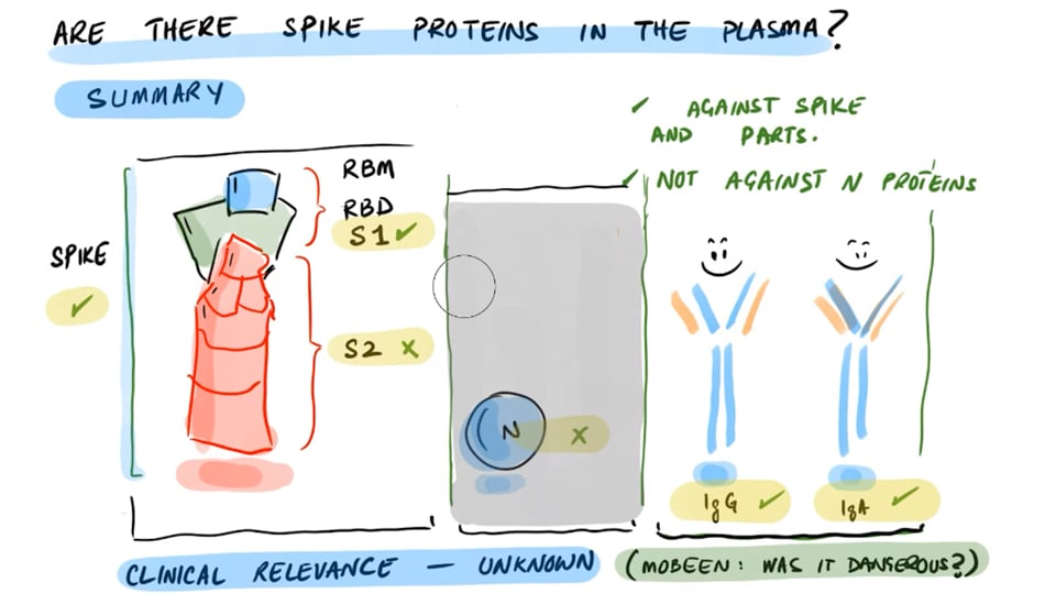 A Study - Spike Proteins in Plasma of Vaccinated (Nothing After The Second Dose)