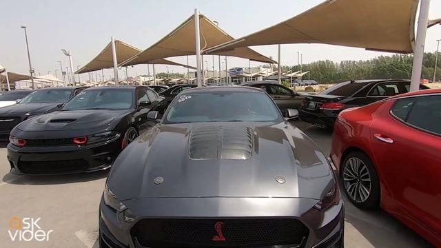 FORD MUSTANG SHELBY GT -...