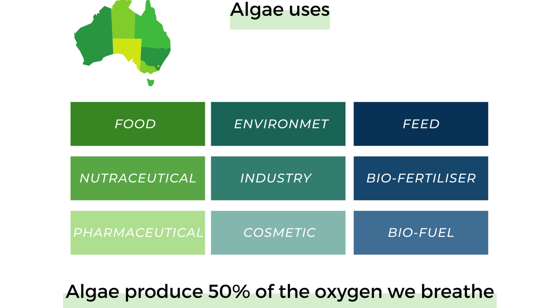 Algae will play an important role in our future