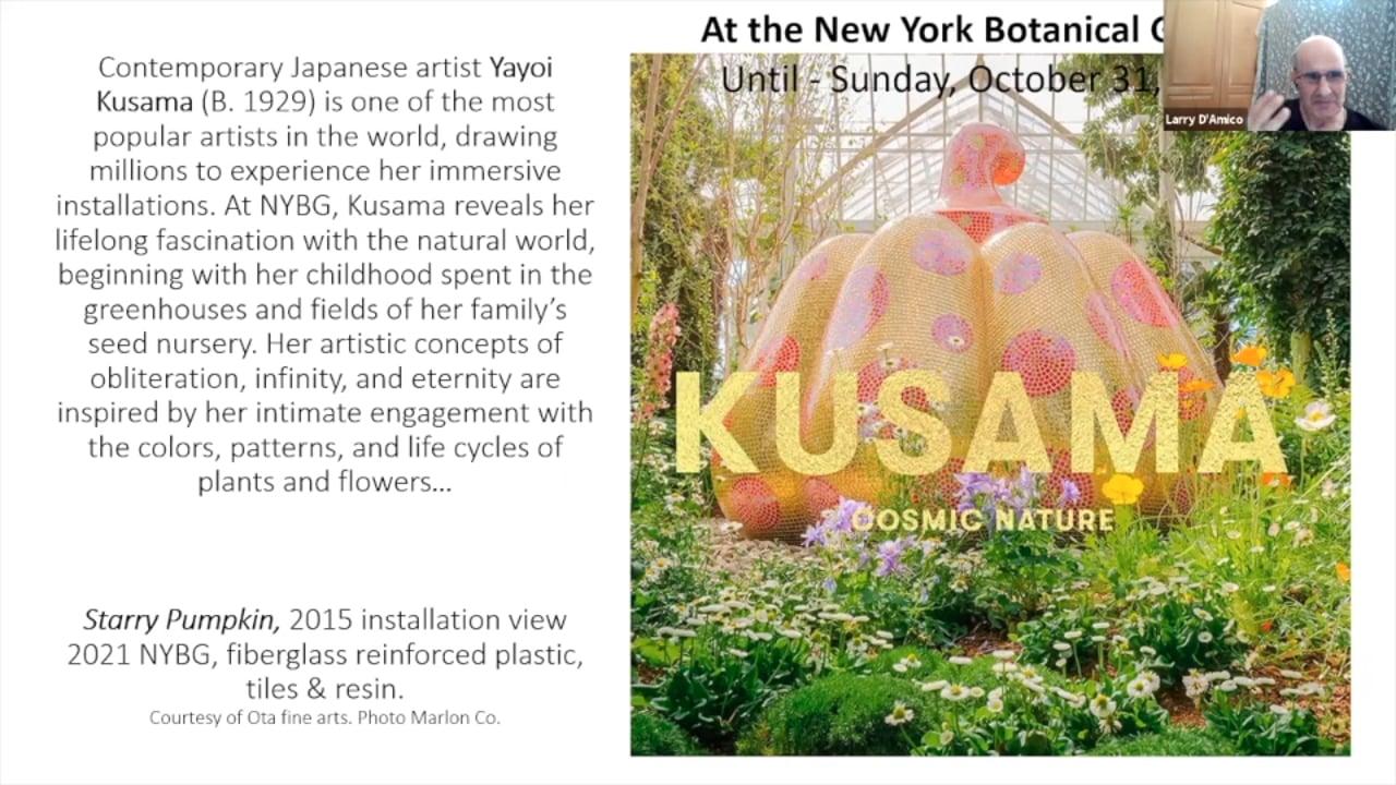Art Talk - KUSAMA: COSMIC NATURE