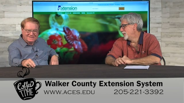 Coffee Time Interview - Walker County Extension System - Danny Dain