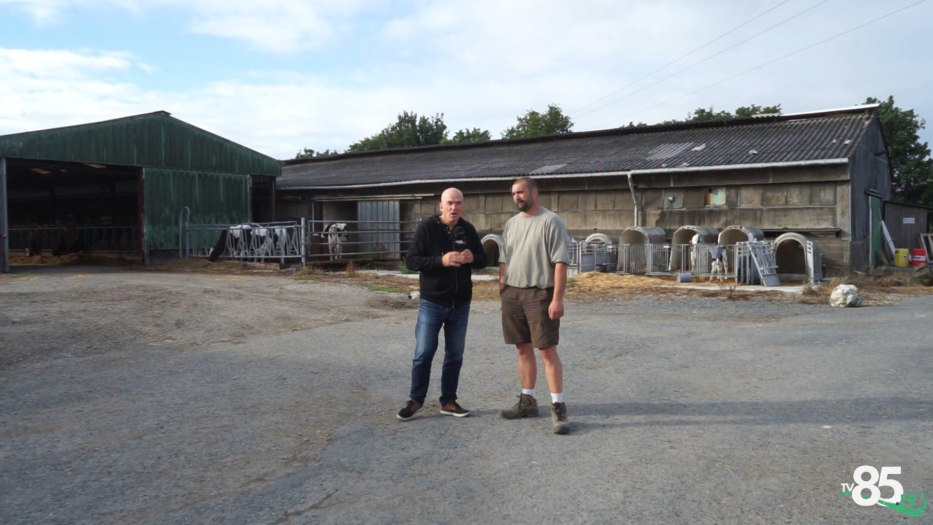Production de mogettes vendéennes avec Vendée Qualité