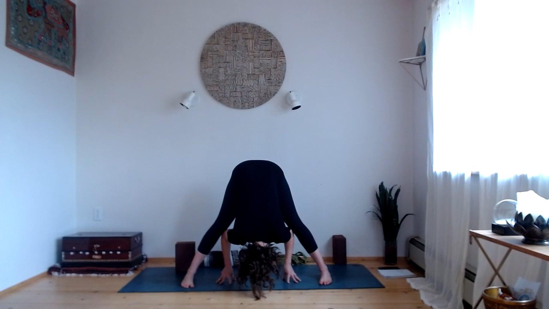 "20 min ""Asana (The Third Limb of Yoga) Flow"" (Full Body)"