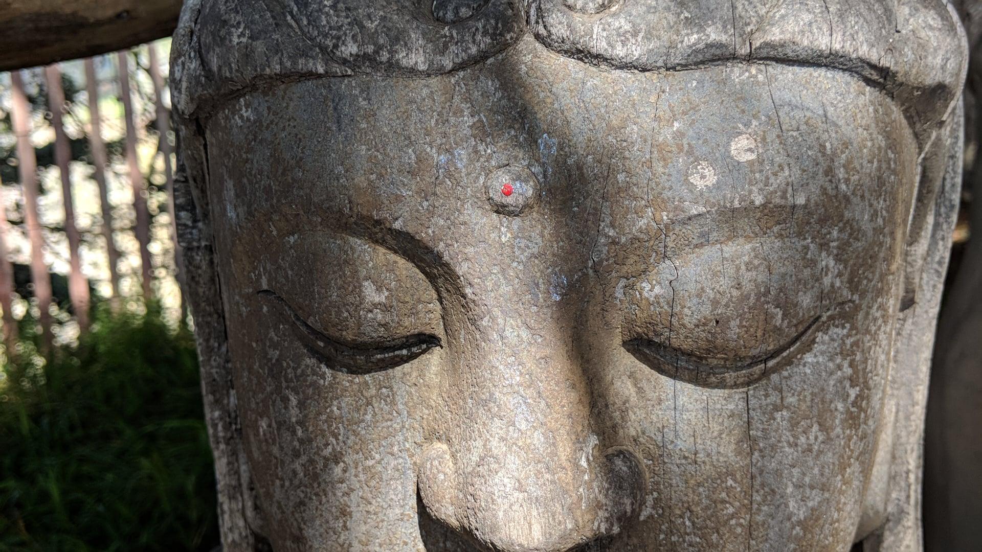 July 12: Overview of Non-Self: Anatta