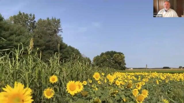 Sustainability and Ecosystems: Virtual FieldTrip