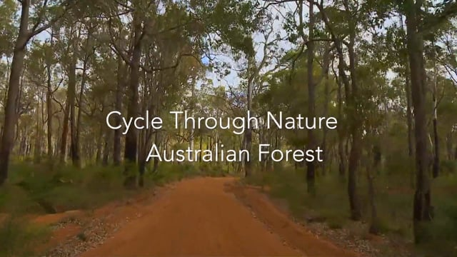 Cycle Through Nature-Virtual Cycle Experience - for Indoor Walking, Treadmill, and Cycling Workouts