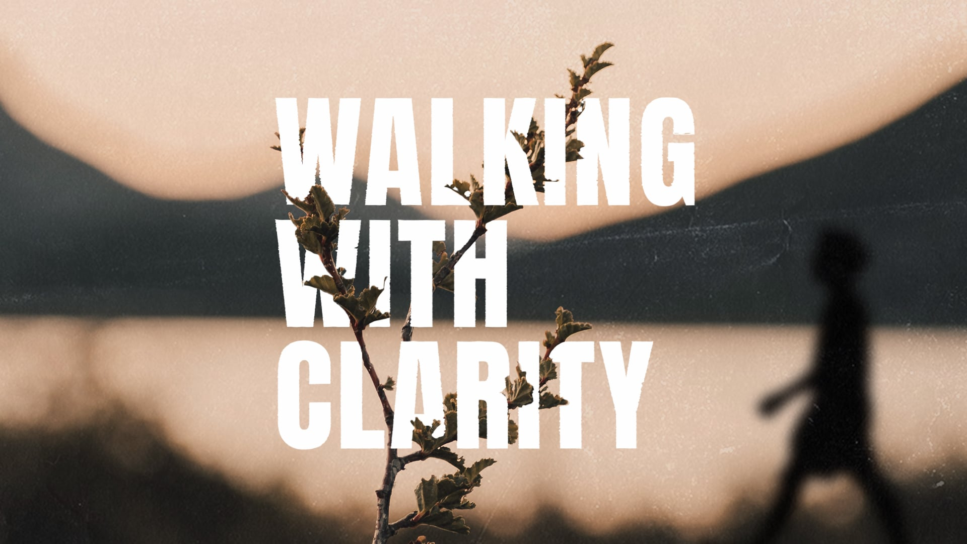 Walking with Clarity Pt. 1   08-01-21
