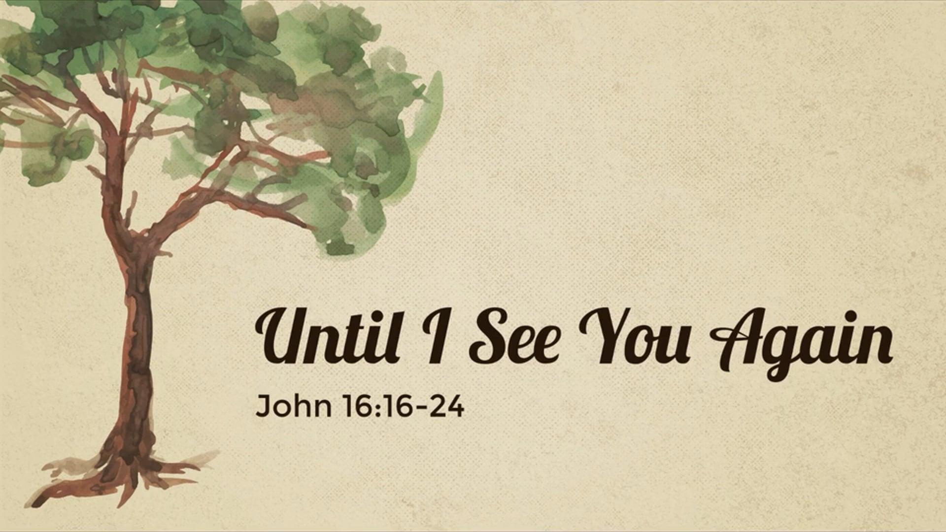 Unitl I See You Again - John 16_16-24