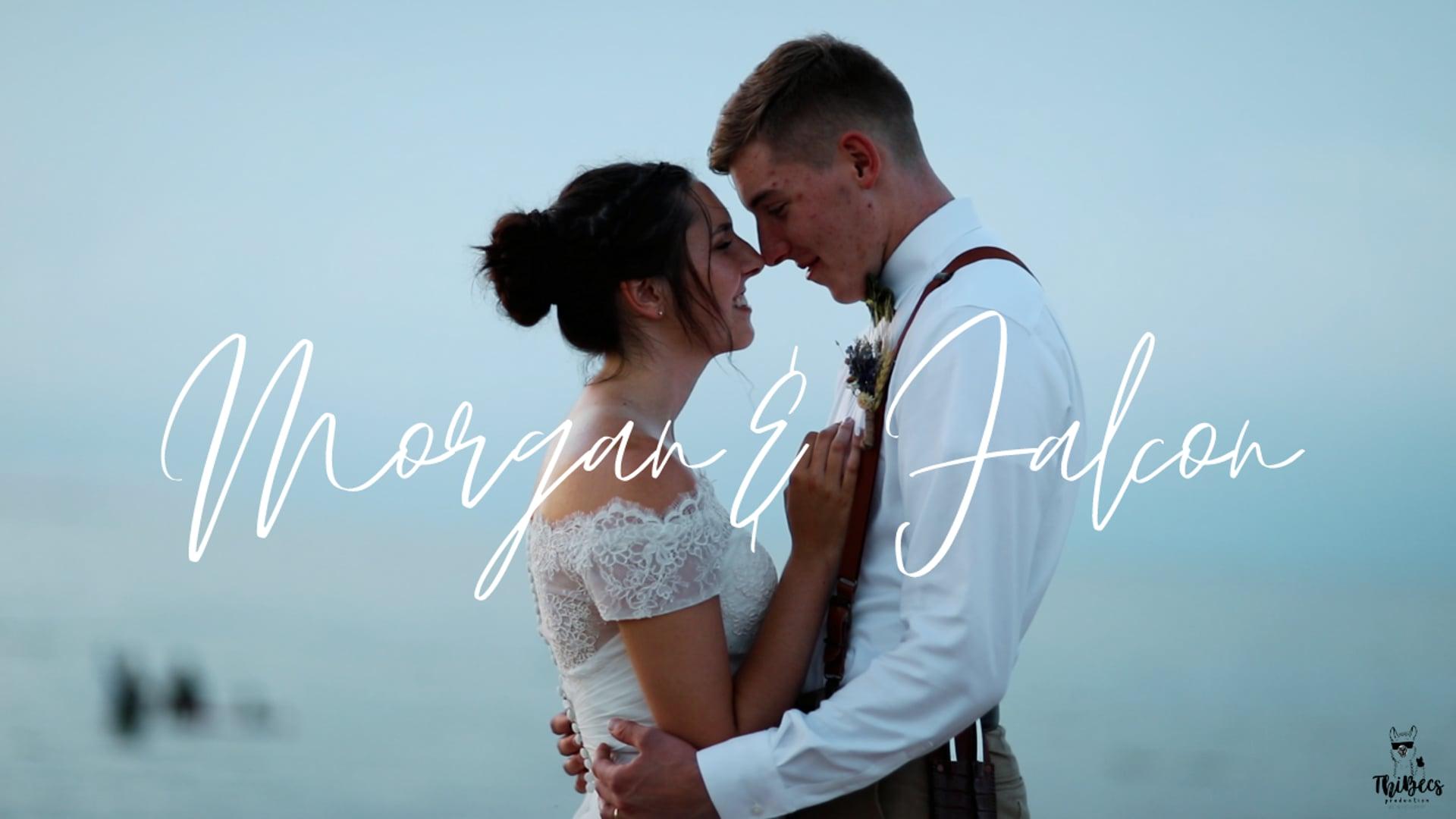 Morgan & Falcon | Highlight Video | Virginia Beach, VA