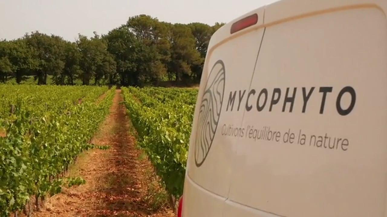 [Start-up] Mycophyto : Boostez vos cultures grâce aux champignons mycorhiziens