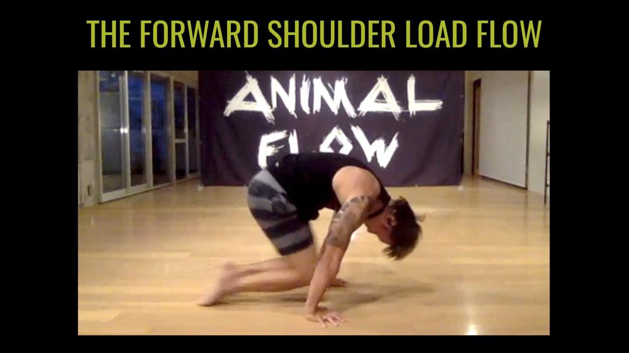 Jin Takazawa: Forward Shoulder Load Flow