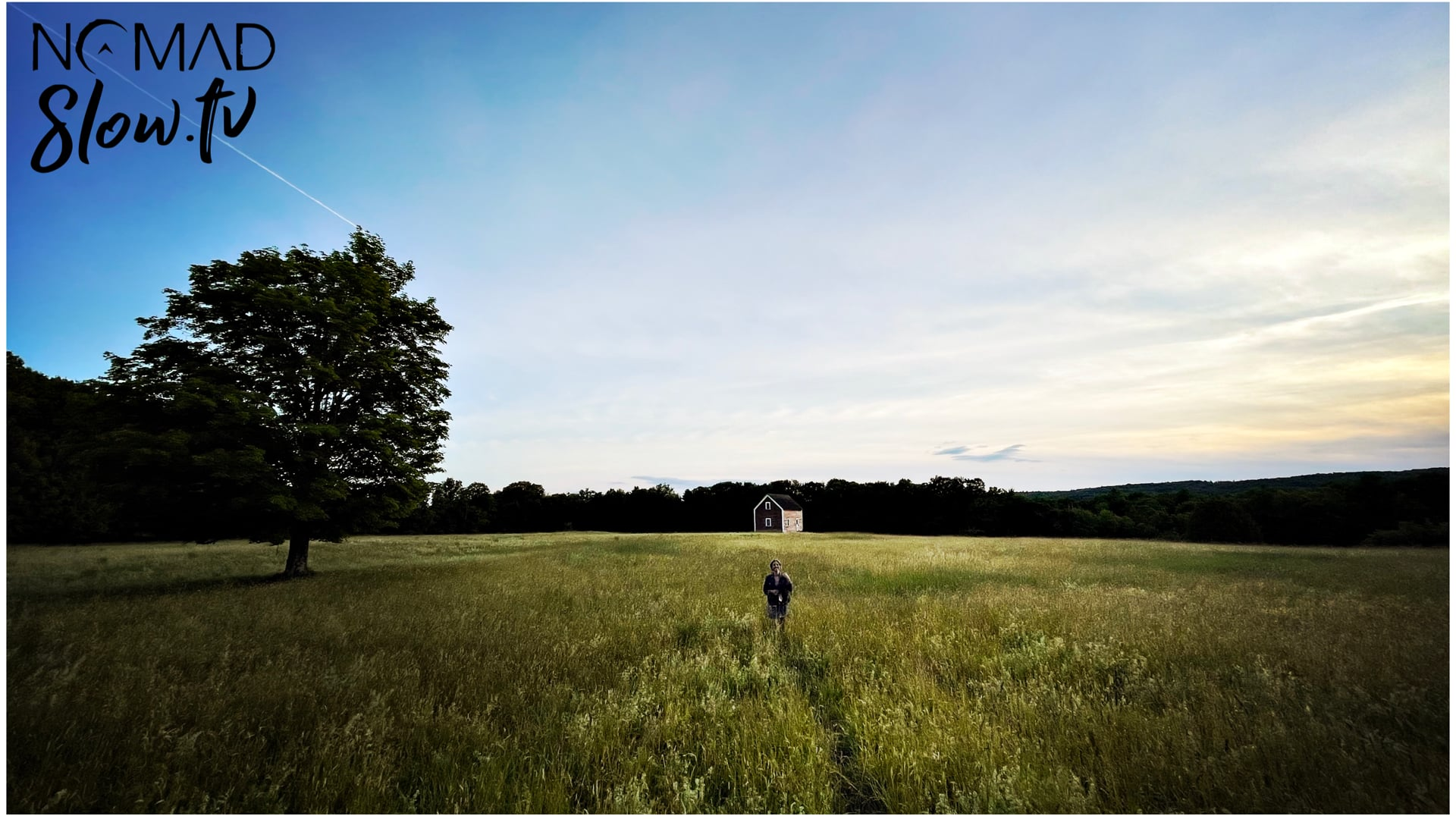 Early Evening at an Ogden Summer Field - Water Lillies - Density & Time