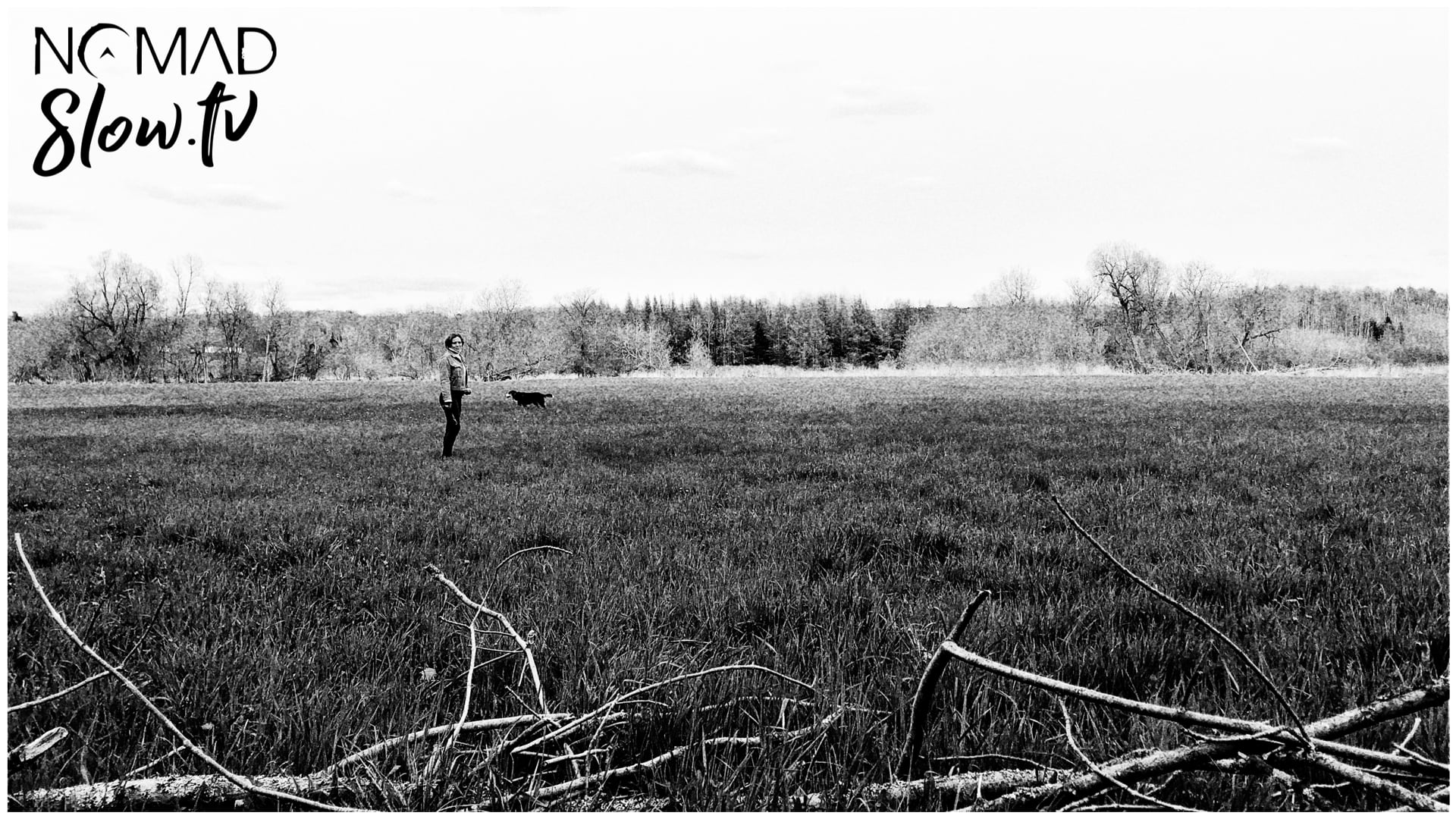 Invincible Summer - B&W field - Bicycle Reunited - Kevin MacLeod