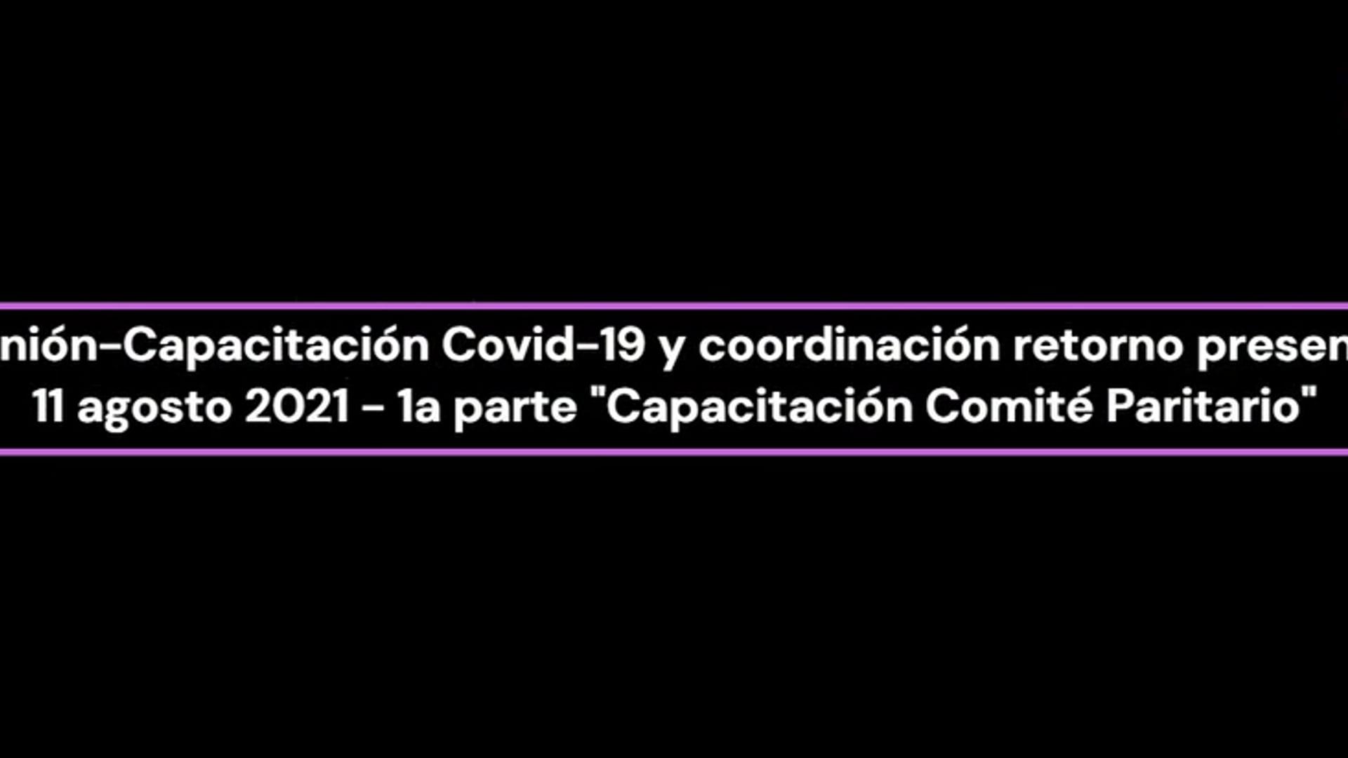 CP-Reunión-Capacitación Covid-19 y coordinación retorno presencial-1a Parte Capacitación Comité Paritario 2021-08-11
