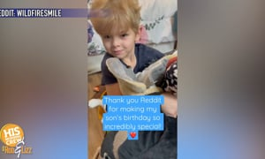 Single mom couldn't afford a stuffed animal for her son but a surprise came her way