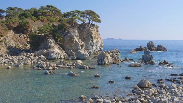 Pine Bays of Gamov Peninsula Primorskiy Krai, Russia - Nature Relax Vide