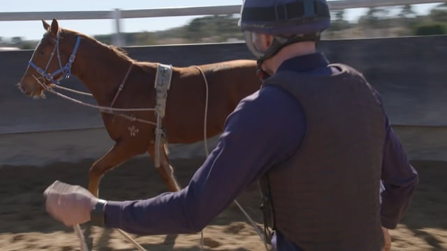 Inglis Insights - The Breaking In Process