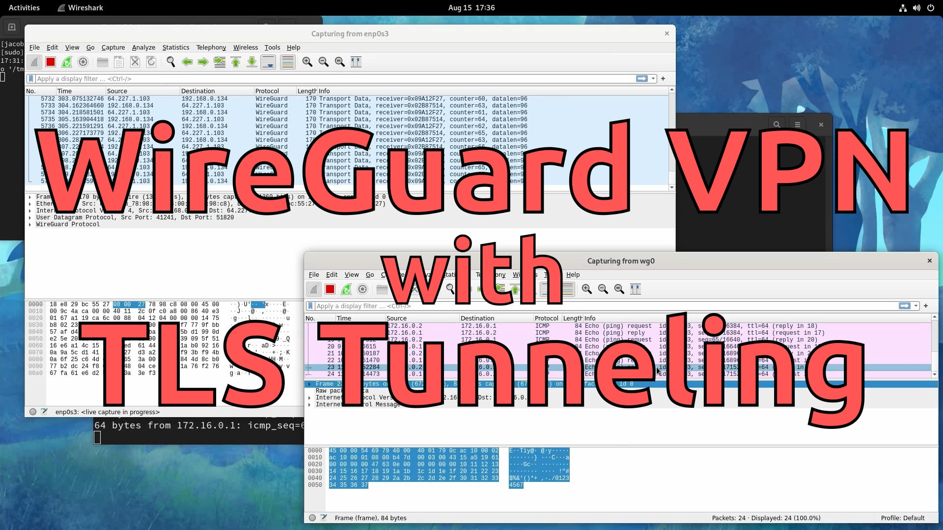 WireGuard VPN with TLS Tunneling