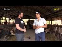Gen TV Agro - Produção leiteira na família Dal'Aqua - Quilombo